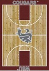 Milliken College Home Court (NCAA) Washington State 01466 Court Rectangle (4000018438) 5'4