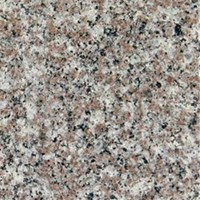 "MS International Granite: Bain Brook Brown 12"" x 12"" Granite Tile TBAIBRBRN12120.38P"