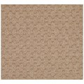Capel Rugs Creative Concepts Grassy Mountain - Octagon 4