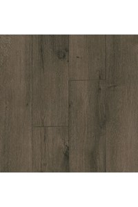 Sphinx Tones Brown/Beige (5444J)  2'3