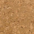 Wicanders Series 100 Panel - Originals Collection Cork Flooring: Dawn O849003