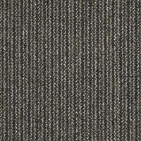 "Shaw Chatterbox: Talker 24"" x 24"" Carpet Tile 54459 59300"