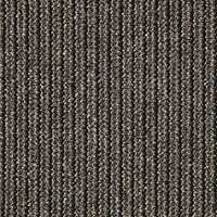 "Shaw Chatterbox: Babbler 24"" x 24"" Carpet Tile 54459 59701"