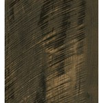 Armstrong Nature's Gallery Collection Exotics : Lustre Cut Forest Night 8mm Laminate L4018
