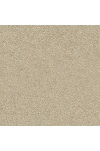 Chandra Rugs Scotia SCO3202 (SCO3202-23) Rectangle 2'0