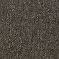 "Shaw Capital III: Eminence 24"" x 24"" Carpet Tile 54480 80701"